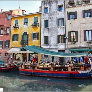 О рынках Венеции 3 поста в блоге. В рассказе с картинками о рыбном подписала названия морской живности - можете подучить, чтобы знать, кто есть кто ) ⠀ #nptravelnotes #italy #italianholiday #venezia #venice #travelawesome #italian_places #italy_vacations #travelblogger #travelphotography #fishmarket #market #mercato #pescheria #рыбныйрынок #rialto #rialtomercato #MercatidiRialto #fish #рыбныйрынок #italia